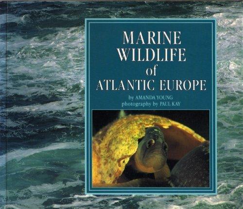 Marine Wildlife of Atlantic Europe By Amanada Young