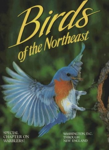 Birds of the Northeast By Winston Williams