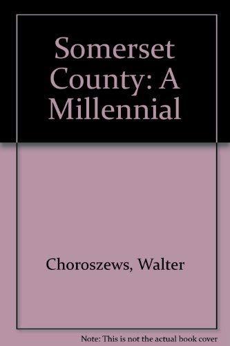 Somerset County: A Millennial By Walter Choroszews