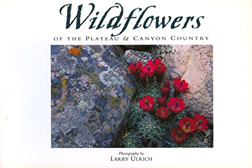 Wildflowers of the Plateau By Ulrich