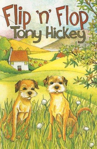 Flip 'n' Flop By Tony Hickey