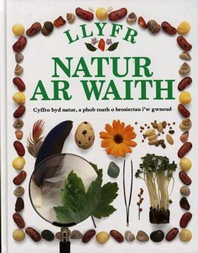 Llyfr Natur Ar Waith / My First Nature Book by Angela Wilkes
