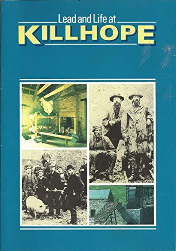 Lead and Life at Killhope
