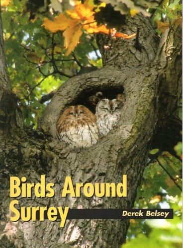 Birds around Surrey By Derek Belsey
