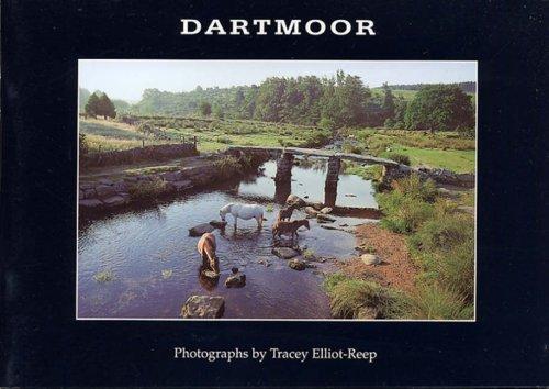 Dartmoor by Tracey Elliot-Reep