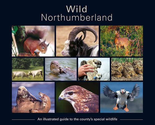 Wild Northumberland By Other Stewart Bonney