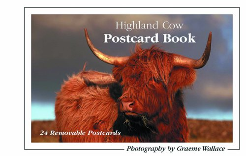 Highland Cow Postcard Book by Graeme Wallace 0956121136 The Cheap Fast Free Post
