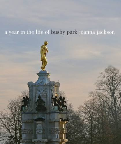 A Year in the Life of Bushy Park By Joanna Jackson