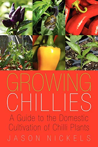 Growing Chillies By Jason Nickels