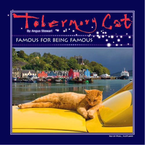 Tobermory Cat By Angus Stewart