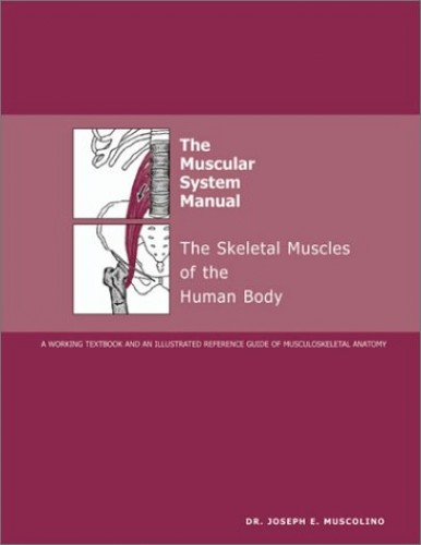 The Muscular System Manual: The Skeletal Muscles of the Human Body By J. E. Muscolino