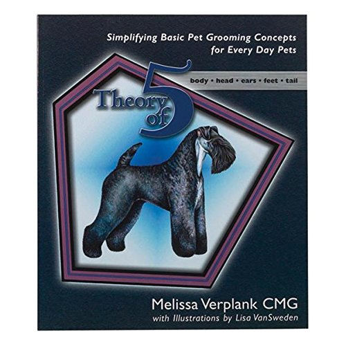 Theory of 5 By Melissa Verplank