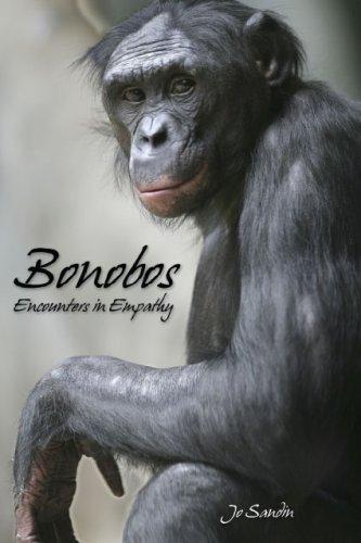 Title: Bonobos Encounters in Empathy