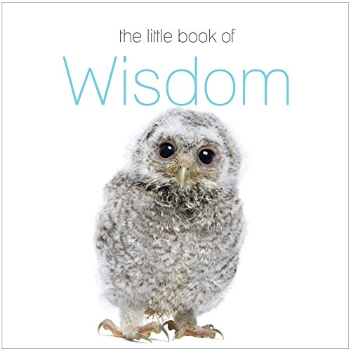 The Little Book of Wisdom By The Next Big Think