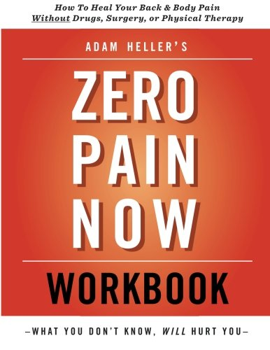 Adam Heller's Zero Pain Now Workbook By Adam Heller