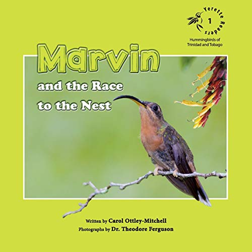 Marvin and the Race to the Nest By Carol Ottley-Mitchell