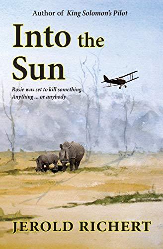 Into the Sun By Jerold Richert