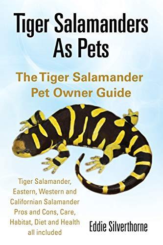 Tiger Salamanders As Pets By Eddie Silverthorne