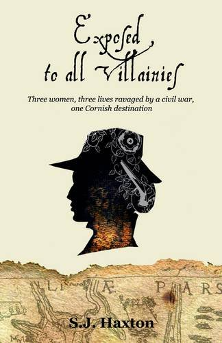 Exposed to All Villainies By Stephanie Haxton