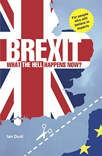 Brexit: What the Hell Happens Now?: Your Guide to Britain's Future by Ian Dunt