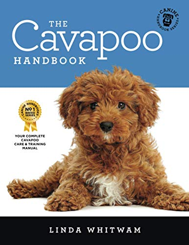 The Cavapoo Handbook: The Essential Guide for New & Prospective Cavapoo Owners (Canine Handbooks) By Linda Whitwam