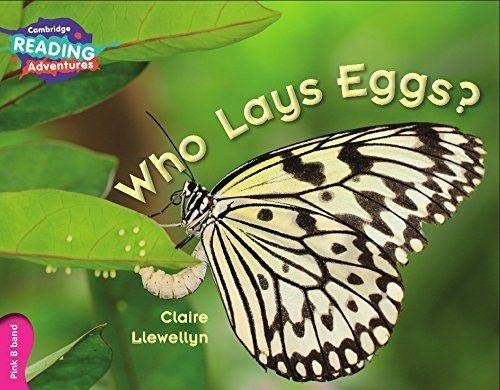 Who Lays Eggs? Pink B Band By Clare Llewellyn