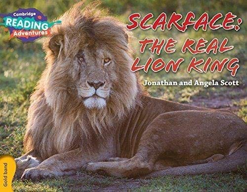 Scarface: The Real Lion King Gold Band By Jonathan and Angela Scott