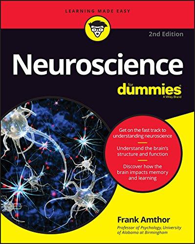 Neuroscience For Dummies, 2nd Edition By Frank Amthor