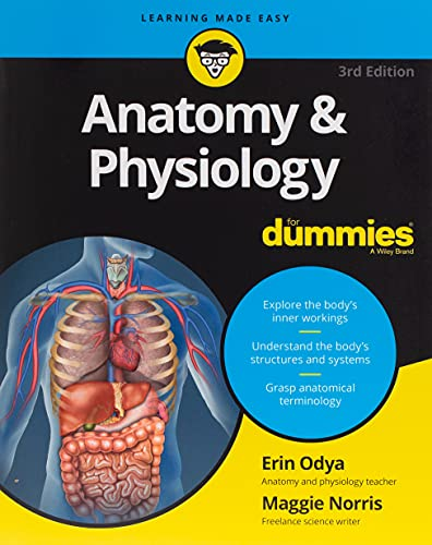 Anatomy and Physiology For Dummies, 3rd Edition (For Dummies (Lifestyle)) By Erin Odya