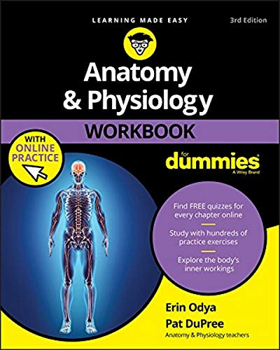 Anatomy & Physiology Workbook For Dummies with Online Practice By Erin Odya