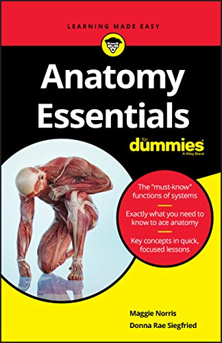 Anatomy Essentials For Dummies By Maggie Norris