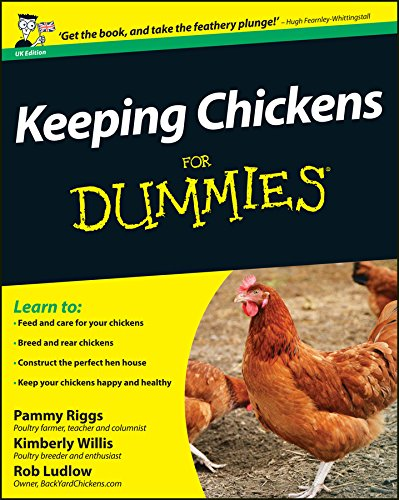 Keeping Chickens For Dummies (UK Edition) By Pammy Riggs