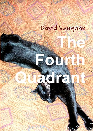 The Fourth Quadrant By David Vaughan (Butterworths European Information Services)