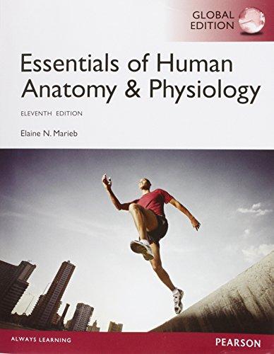 Essentials of Human Anatomy & Physiology, Global Edition By Elaine N. Marieb