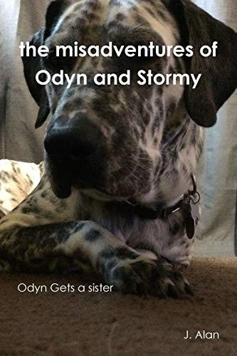 the Misadventures of Odyn and Stormy By J. Alan