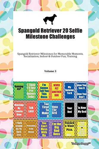 Spangold Retriever 20 Selfie Milestone Challenges Spangold Retriever Milestones for Memorable Moments, Socialization, Indoor & Outdoor Fun, Training Volume 3 By Todays Doggy