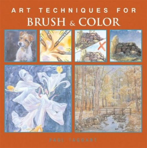 Art Techniques for Brush & Color By Senior Lecturer in Politics Paul Taggart (University of Sussex)