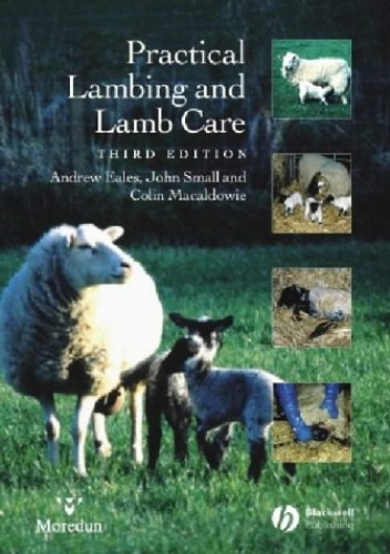 Practical Lambing and Lamb Care: A Veterinary Guide By Andrew Eales