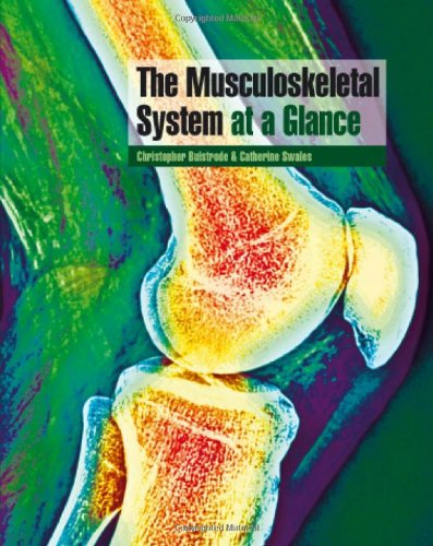 The Musculoskeletal System at a Glance By Christopher Bulstrode