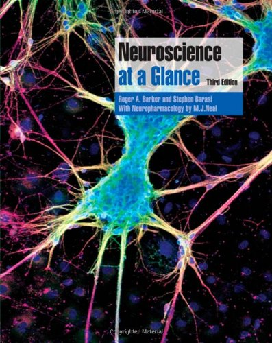 Neuroscience at a Glance by Roger A. Barker
