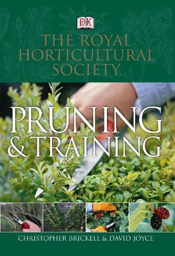 RHS Pruning and Training By Christopher Brickell