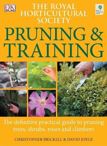 RHS Pruning & Training By David Joyce