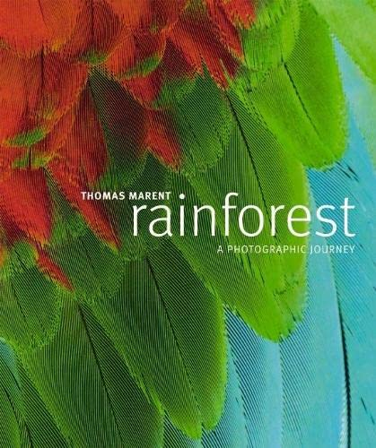 Rainforest by Thomas Marent