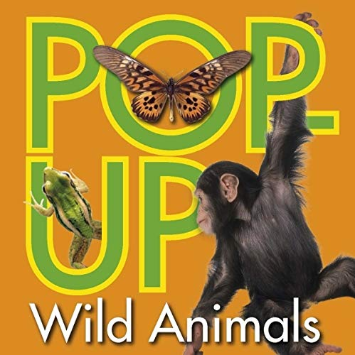 Pop-up Wild Animals (Small Pop-up) by Unknown Author