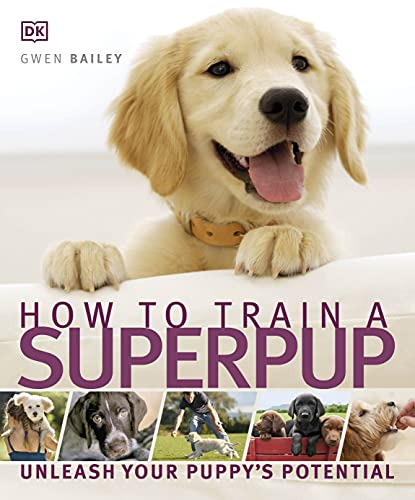 How to Train a Superpup By DK