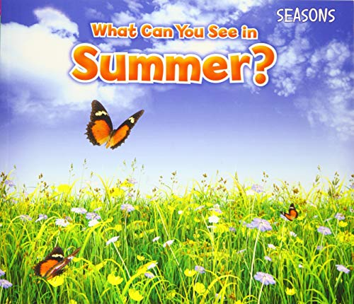 What Can You See In Summer? By Sian Smith