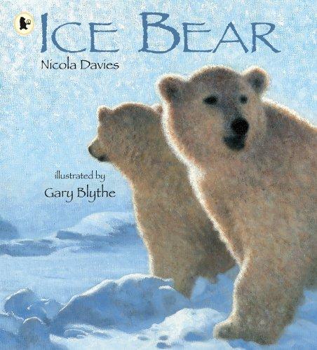 Ice Bear By Nicola Davies