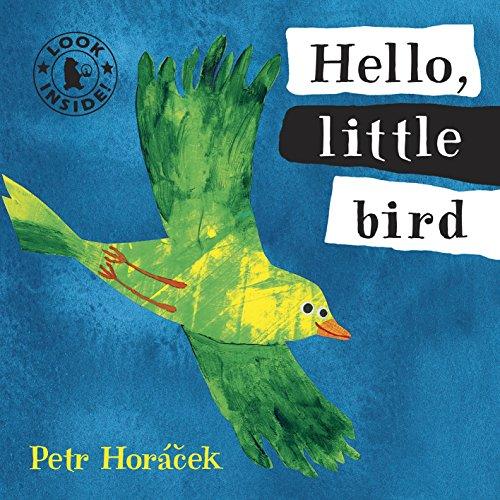 Hello, Little Bird By Petr Horacek