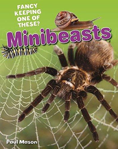 Minibeasts By Paul Mason