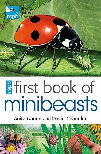 RSPB First Book Of Minibeasts von Anita Ganeri